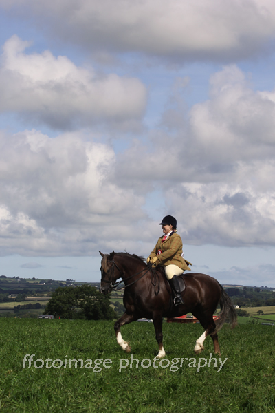Llandysul Show 2015 - showing a horse