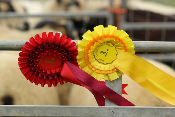 Sioe Llandysul 2017 - red and yellow rosettes