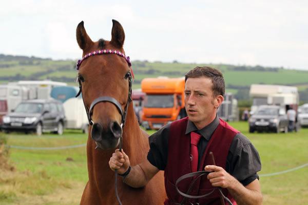 Sioe Llandysul 2017 - horse and handler