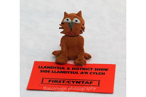 Llandysul Show 2015 - winning craft