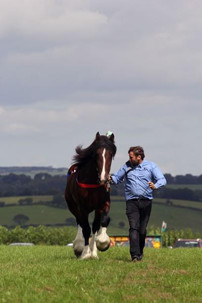 Sioe Llandysul 2017 - running with horse