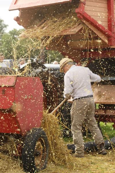 Sioe Llandysul 2017 - threshing machine