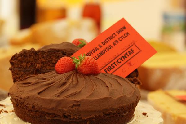 Sioe Llandysul 2017 - winning cake