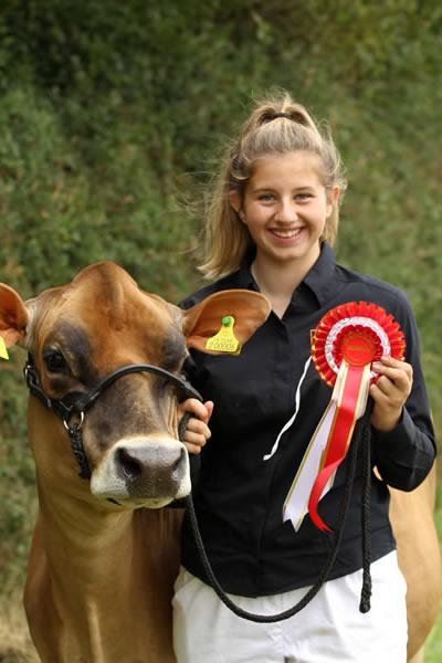 Sioe Llandysul 2017 - winning cow